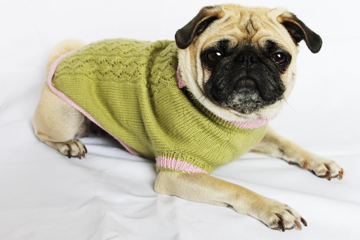Hundepullover Im Trachtenlook Landsach Schone Sachen Vom Land